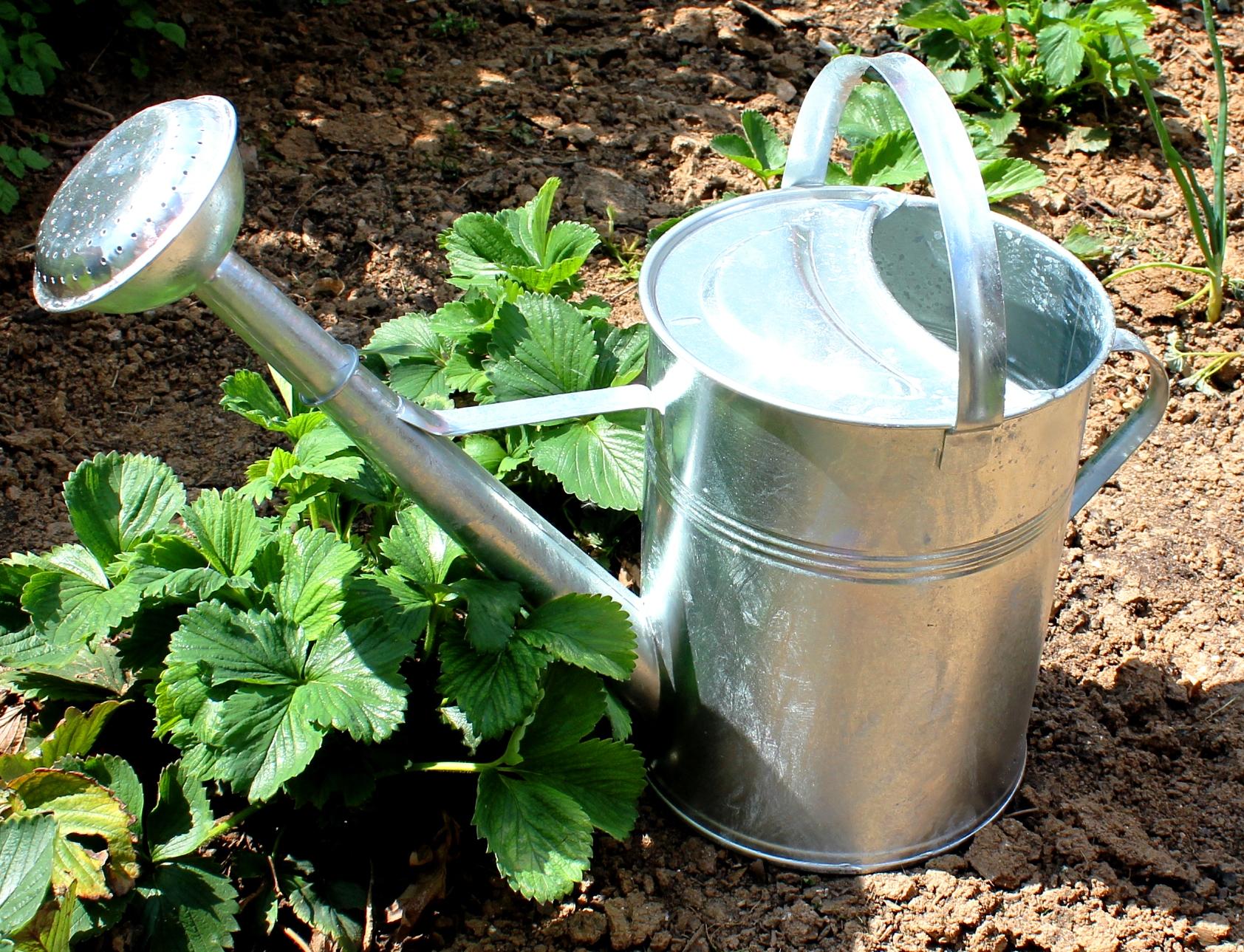 Zahradní konev 9l - pozinkovaná základní