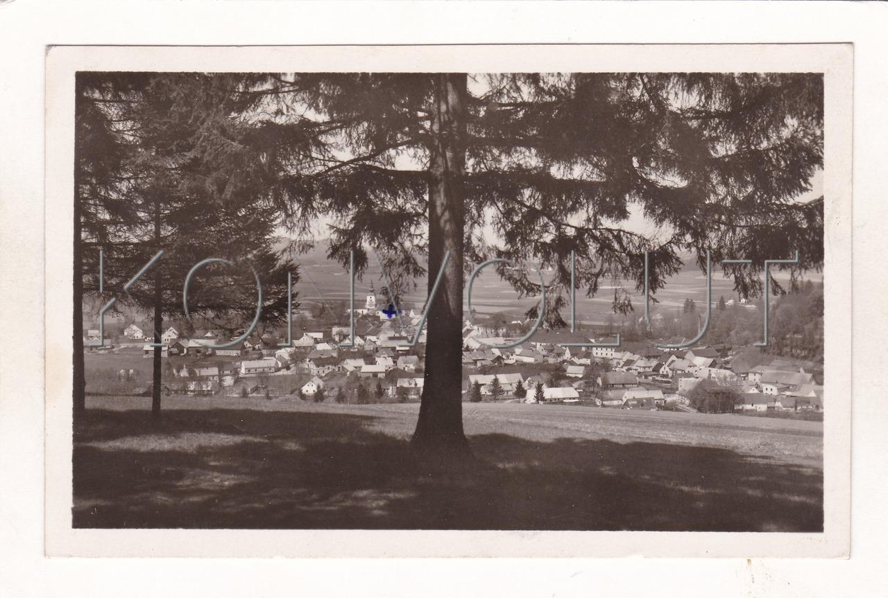 Obrázek  KOLINEC - okres Klatovy, Kolinec, Šumava, Pošumaví, celkový pohled, strom, ČB foto a náklad J. Pospíchal, MF