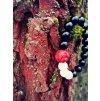 Red Elephant náramek