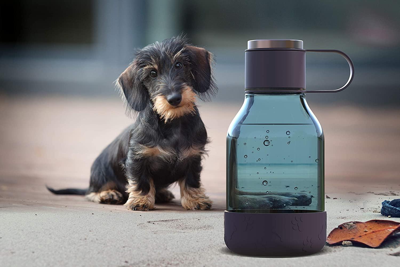 ASOBU Láhev na vodu s miskou pro psy - 1,5l fialová