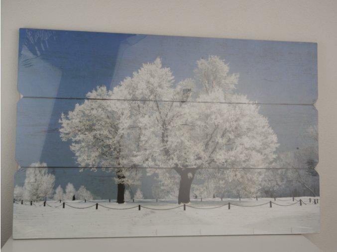 """Obraz na zeď """"Strom"""""""