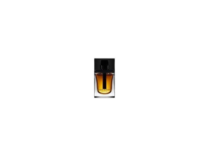 Christian Dior Homme Parfum parfémovaná voda pánská 100 ml  již nová verze 2020