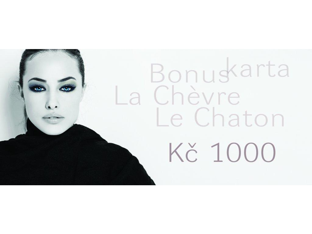 bonuskarta 2017 1000