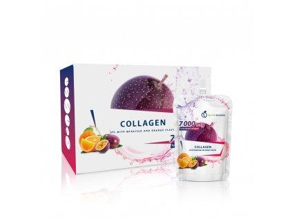 nsd collagen1[1]