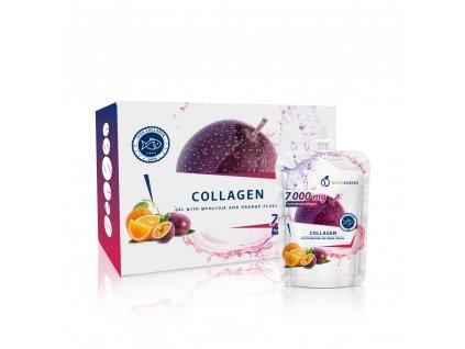 nsd collagen fish1[1]