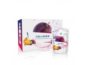 nsd collagen1[1]