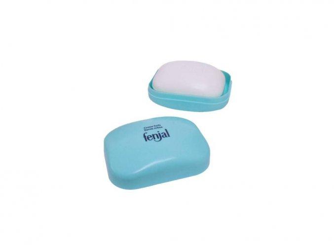 fenjal cteme soap 100 g