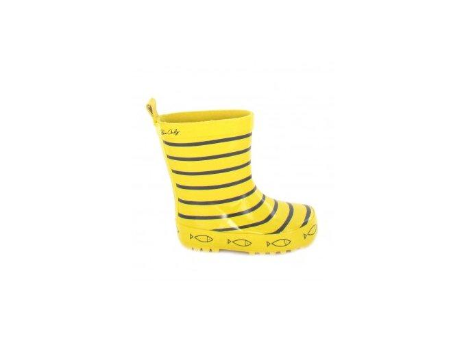 timouss jaune