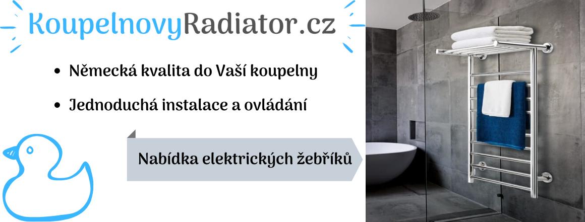 Koupelnové žebříky
