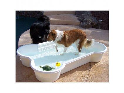 Bazény pro psy