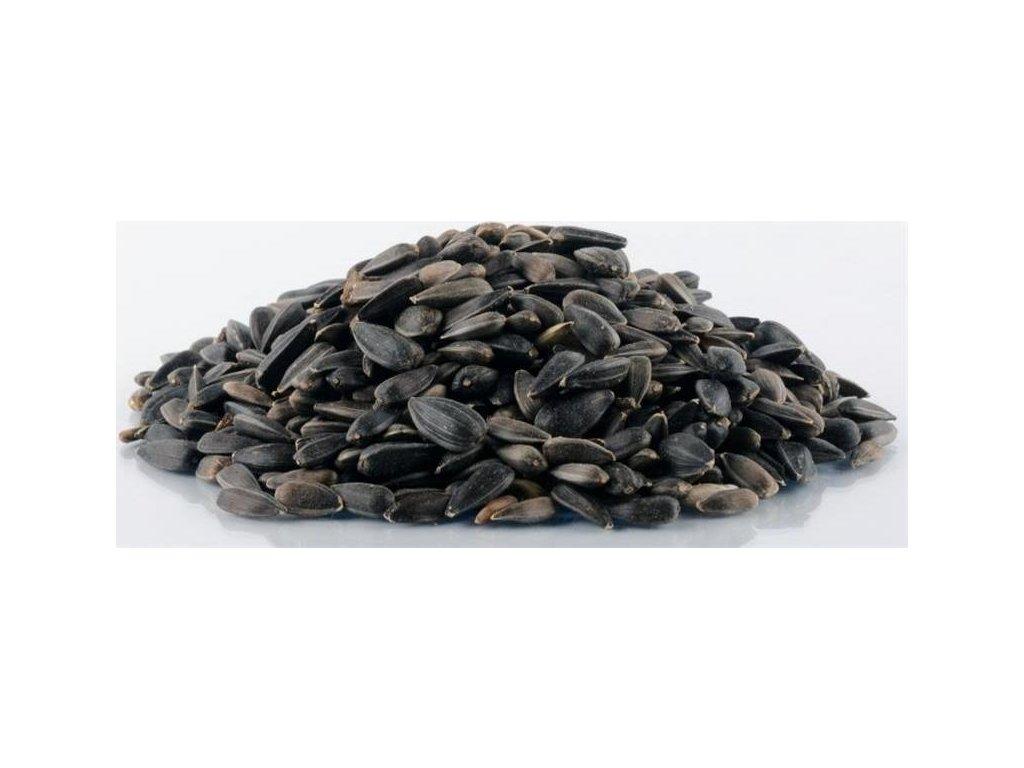 Slunečnice černá Avicentra 1kg