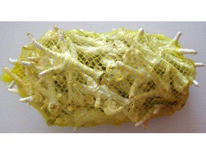 Kuřecí pařát bílý - 50 ks/bal.