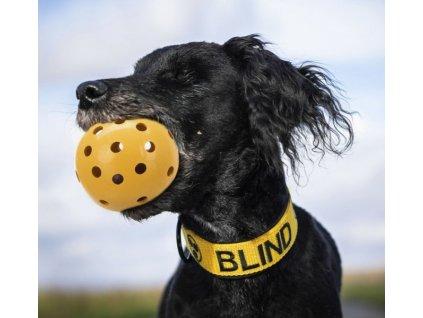 Děrovaný míč rolničkou, pro slepé psy, o 7 cm