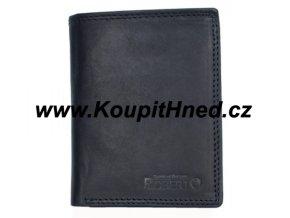 Pánská kožená peněženka na výšku ROBERTO