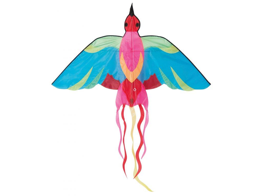 Létající pestrobarevný pták