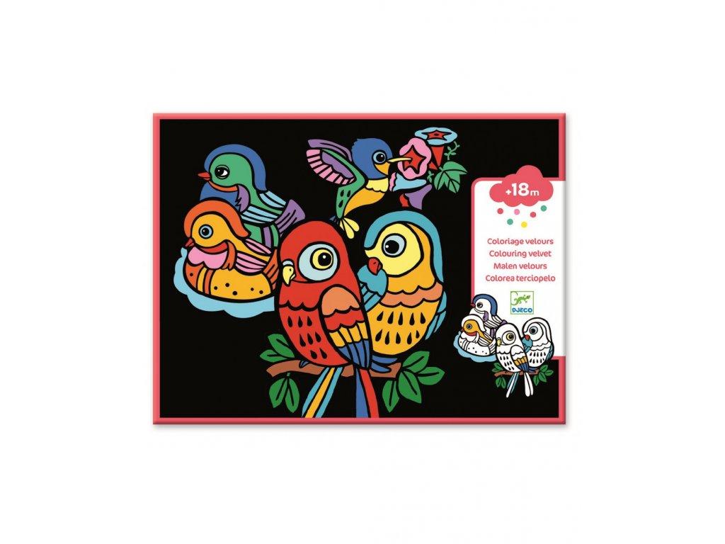 DJECO Sametové malování veselí papoušci