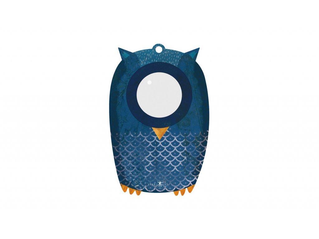 CD027 OWL MY BIG EYE (1)