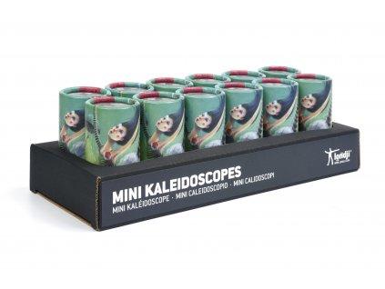 CD084 BALLERINE MINI KALEIDOSCOPE (1)