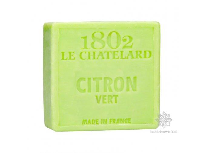 savon carre 100 g citron vert sans palme