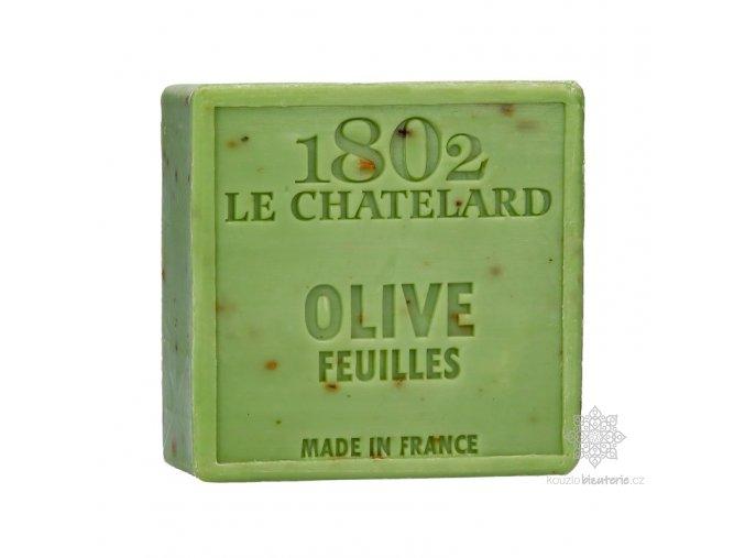 savon carre 100 g olive feuille sans palme