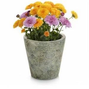 Květináče | Podmisky