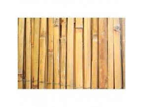 Rohož stínící bambus štípaný 1x5m  STREND