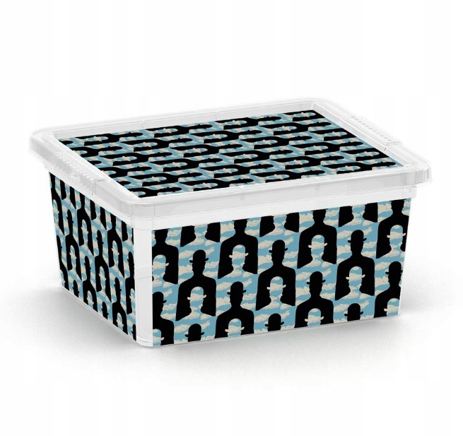 Box úložný C BOX ARTISTS 19,5x16,5x9,5cm 2L