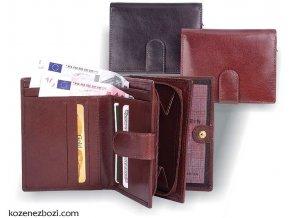 dámská peněženka DITA (hnědá)