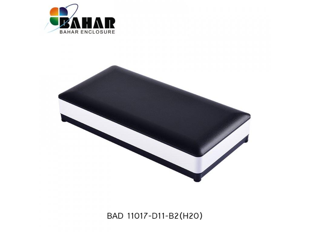 BAD 11017 D11 B2 (H20) 1