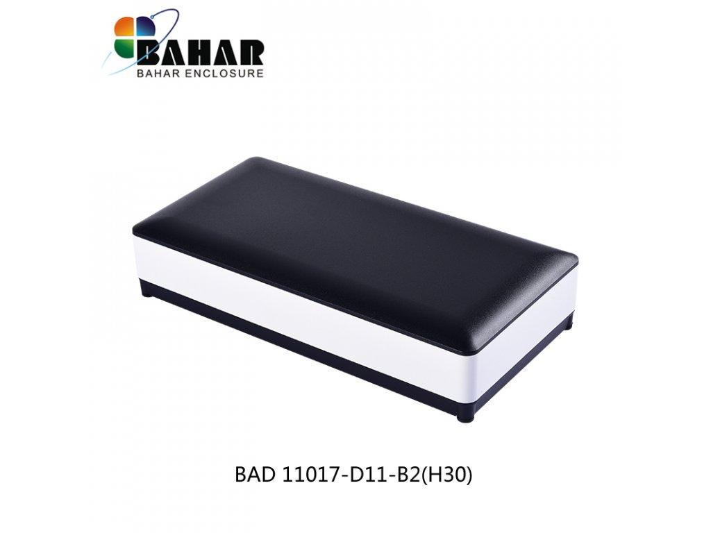BAD 11017 D11 B2 (H30) 1