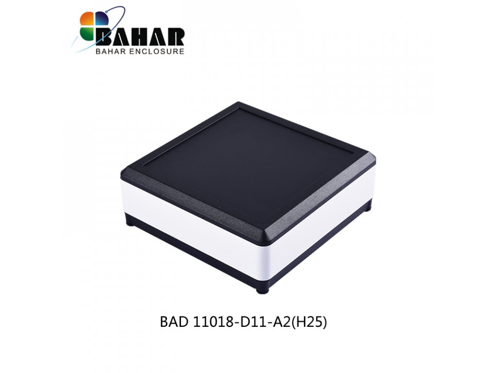 BAD 11018 D11 A2(H25) 1