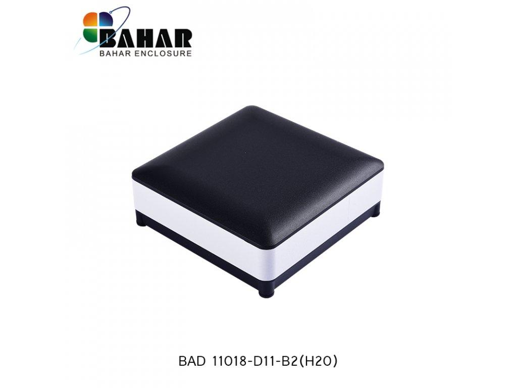 BAD 11018 D11 B2(H20) 1