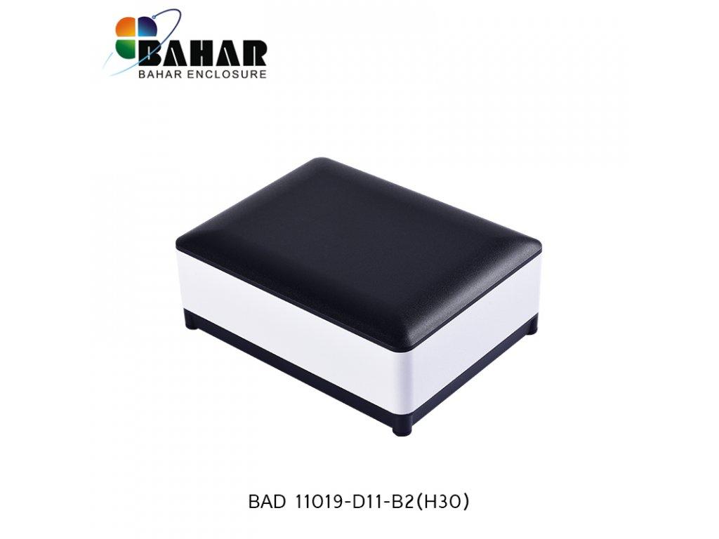 BAD 11019 D11 B2(H30) 1