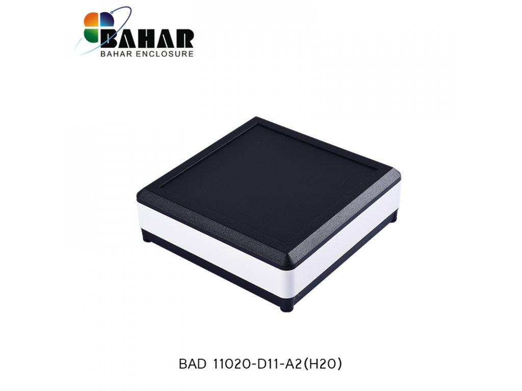 BAD 11020 D11 A2(H20) 1