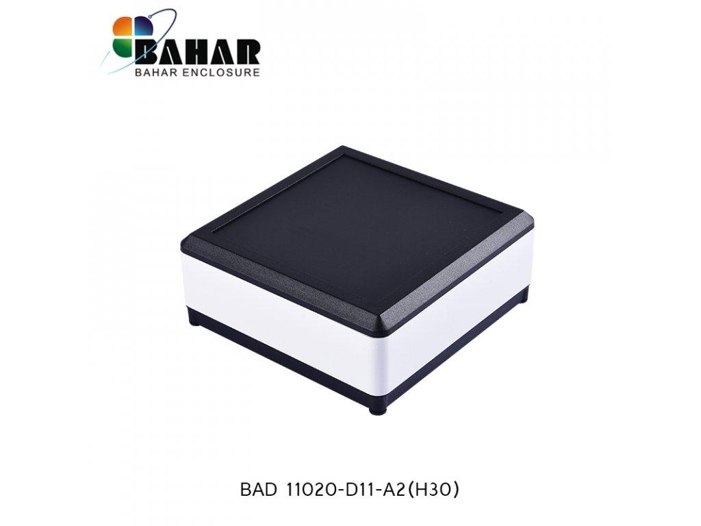 BAD 11020 D11 A2(H30) 1