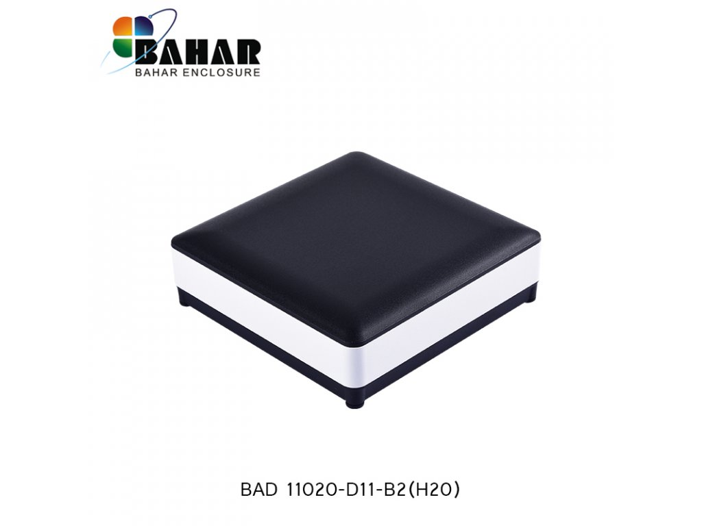 BAD 11020 D11 B2(H20) 1