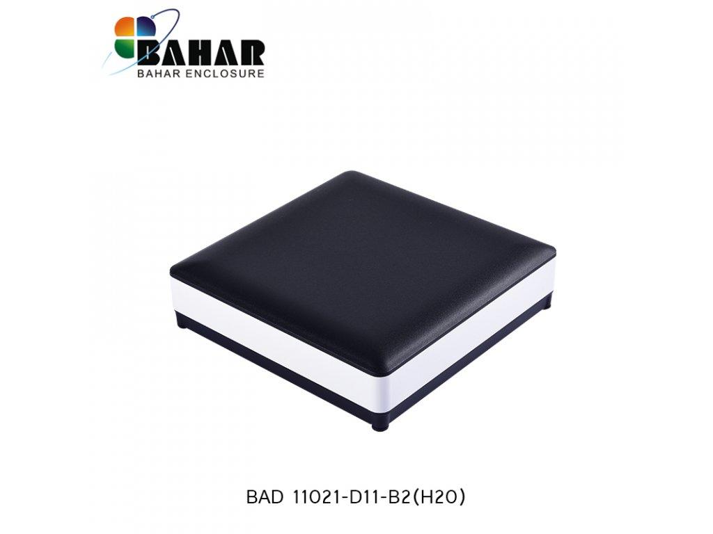 BAD 11021 D11 B2(H20) 1