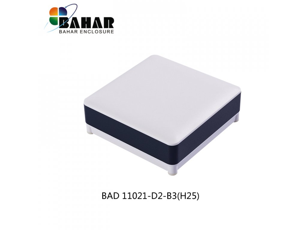 BAD 11021 D2 B3(H25) 1