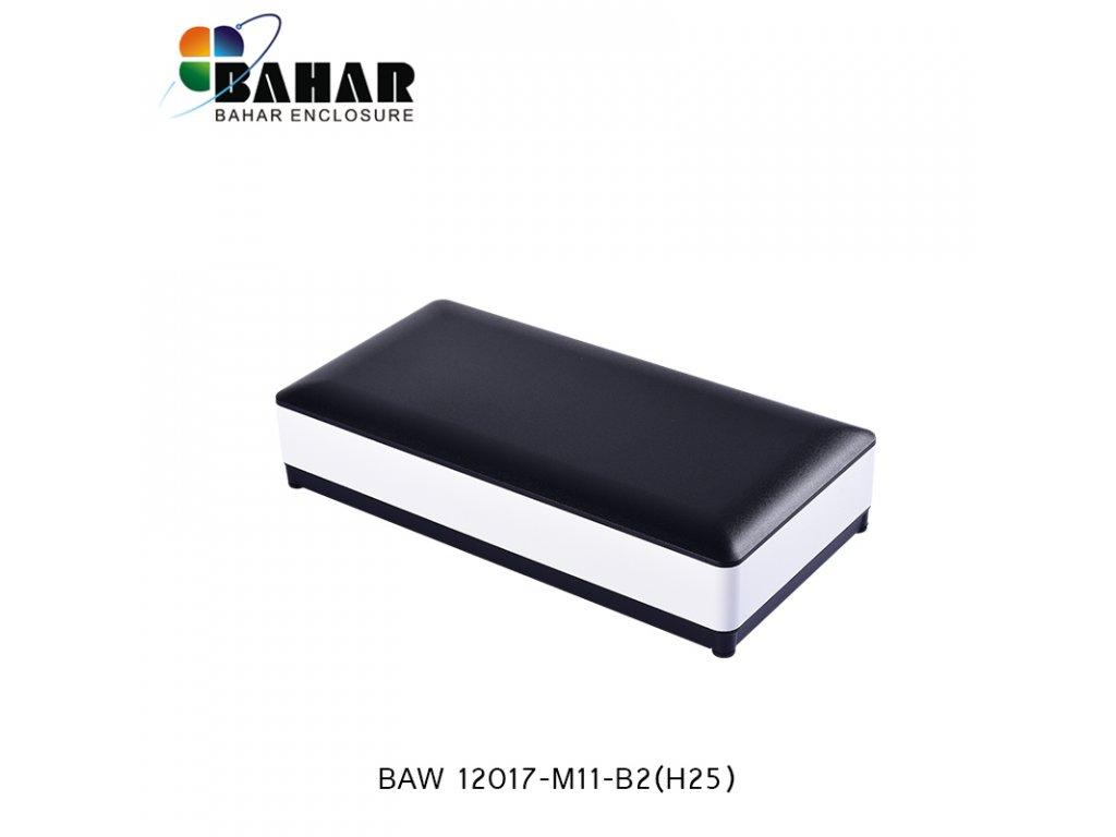 BAW 12017 M11 B2 (H25) 1