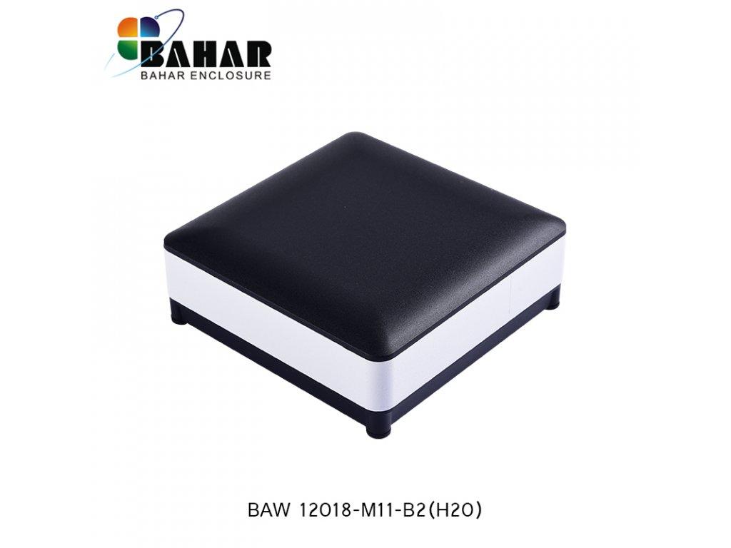 BAW 12018 M11 B2(H20) 1