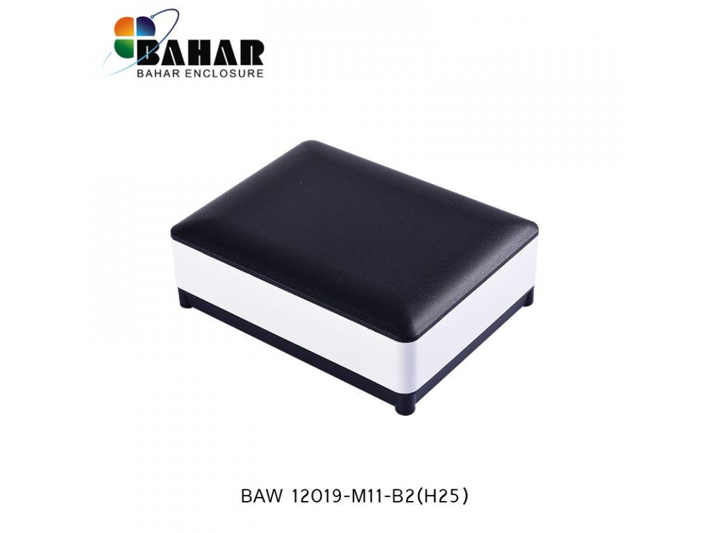 BAW 12019 M11 B2(H25) 1