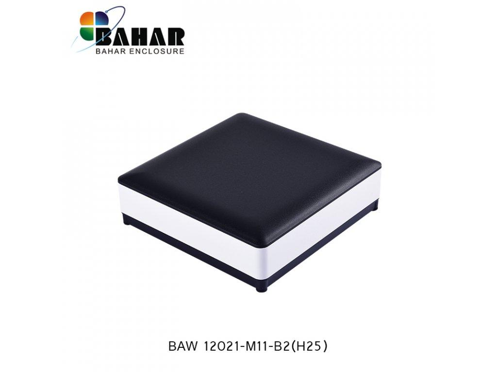 BAW 12021 M11 B2(H25) 1