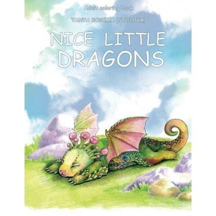 Nice little dragon, Tatiana Bogema (Stolova)