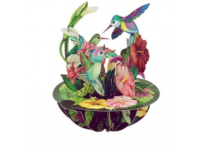 Přání  Kolibřík
