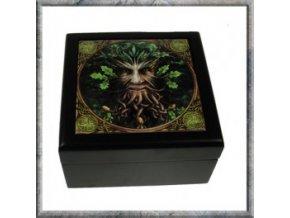 Dřevěná krabička Stromovous
