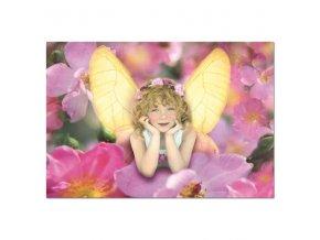 Puzzle-  EDUCA - Motýlí víla 1000 dílků