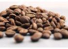 Káva a kávoviny