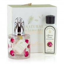 Ashleigh & Burwood Darčekové balenie Katalytická lampa ROSE PETALS s vôňou JAPANESE ORCHID (japonská orchidea) 180ml