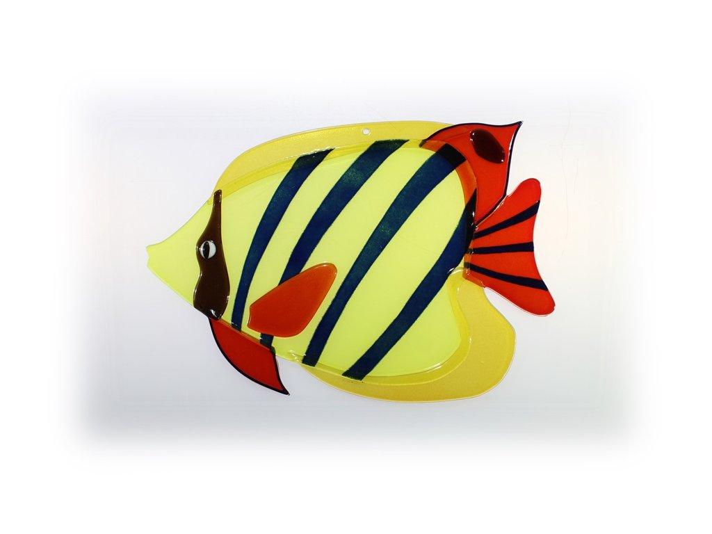 Ryba skleněná 3