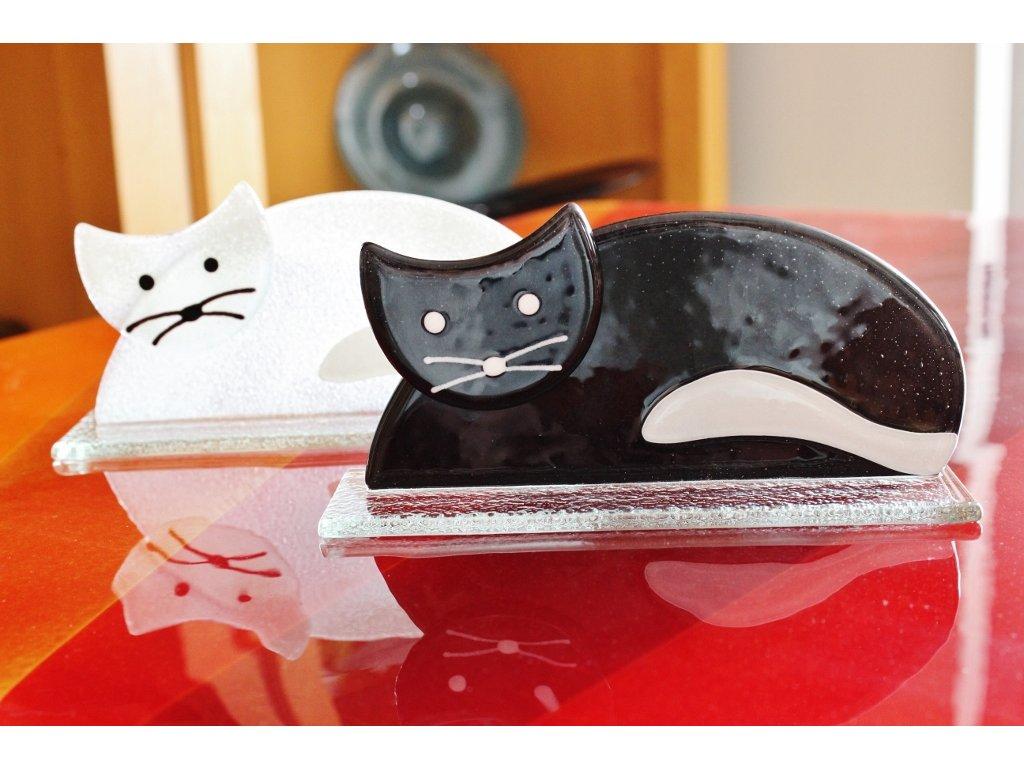 Černá nebo bílá kočička